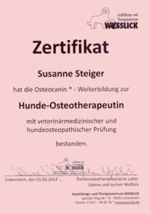 Diplom Osteophatie