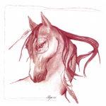 art_horse_anima-natura.com