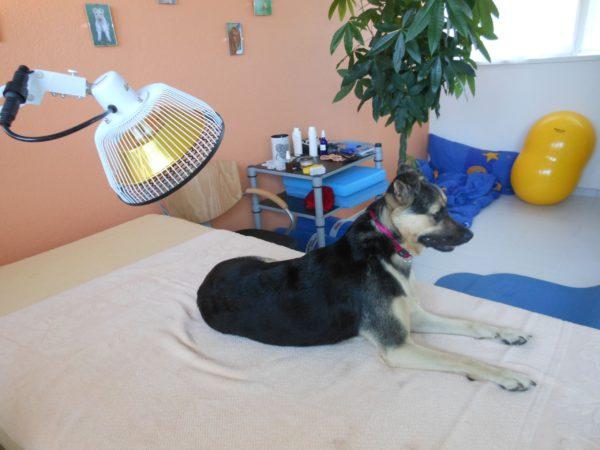 Therapieformen-Kältetherapie-Wärmetherapie