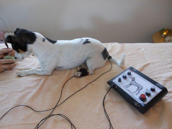Therapieformen-Elektroteraphie