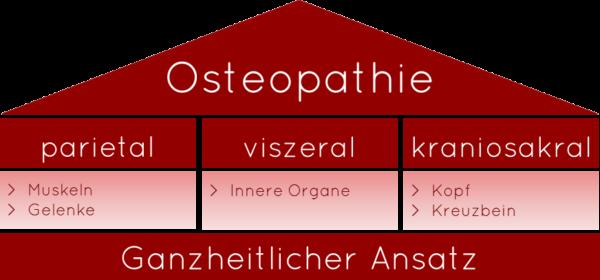 Osteopathie-kurz-erklärt