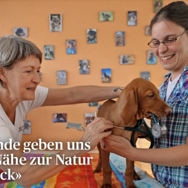 Hunde geben uns die Nähe zur Natur zurück-anima-natura